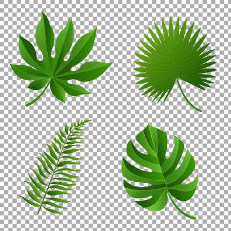 Tropische Bladeren, Vectorillustratie, Met Gradient Mesh Stock Illustratie