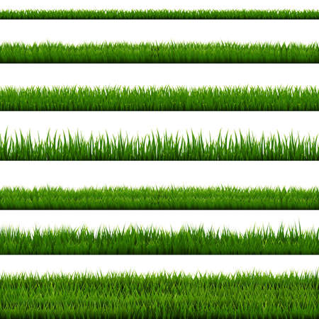 Grass Border Collection, Vector Illustration