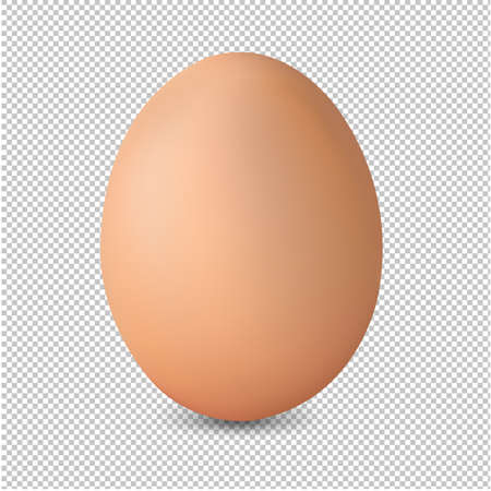 Fresh Egg Isolated Transparent Background With Gradient Mesh, Vector Illustration 向量圖像