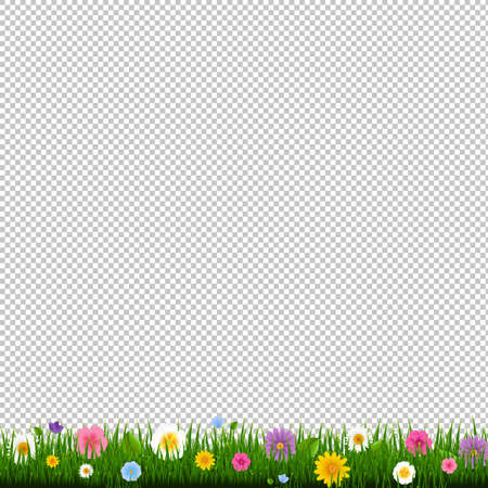 Grass And Border Transparent Background With Gradient Mesh, Vector Illustration
