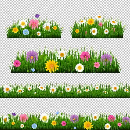 Grass And Border Collection Transparent Background With Gradient Mesh, Vector Illustration