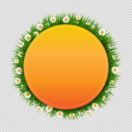 Banner Ball With Grass And Flower Transparent Background With Gradient Mesh, Vector Illustration