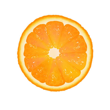 Orange Slice With White Background With Gradient Mesh, Vector Illustration