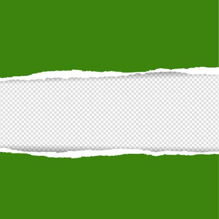 Green Torn Paper, Vector Illustration
