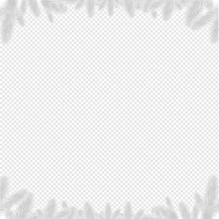 Firtree Border Isolated, Vector Illustration