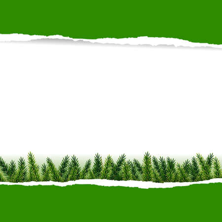Ripped Green Paper With Furtree With Gradient Mesh, Vector Illustration