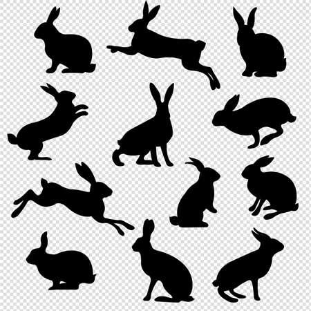 Rabbit Set Isolated Transparent Background, Vector Illustration