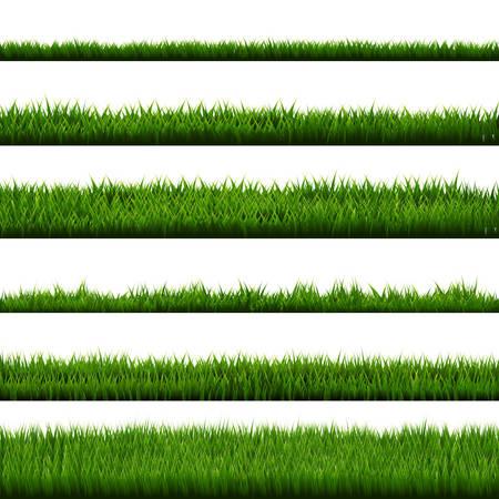 Green Grass Border Big Collection, Vector Illustration Illustration