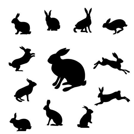 Rabbit Set Isolated, Vector Illustration Ilustracja
