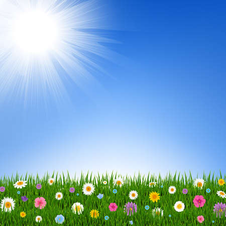 Grass And Flowers Border And Sky With Gradient Mesh, Vector Illustration Illustration