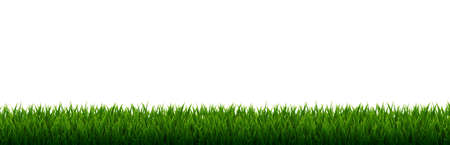 Green Grass Border With Gradient Mesh, Vector Illustration 矢量图像