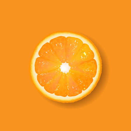 Banner With Fruit Orange With Gradient Mesh, Vector Illustration
