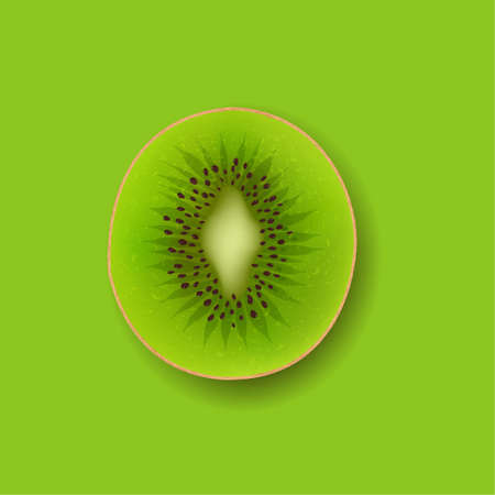 Banner With Fruit Kiwi With Gradient Mesh, Vector Illustration