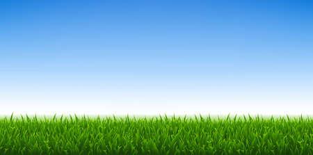 Groen gras en blauwe hemelachtergrond, vectorillustratie