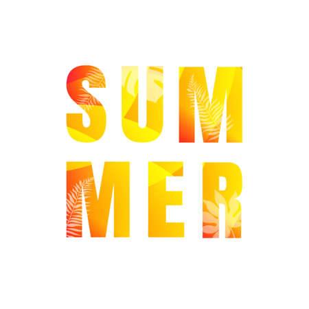 Summer Text Isolated White Background Illustration Ilustracja