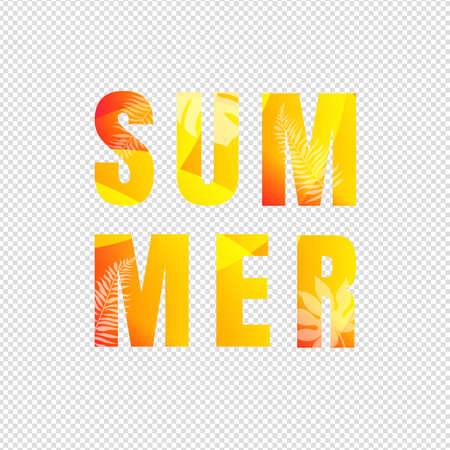 Summer Text Isolated Transparent Background Illustration Ilustracja