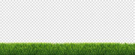Green Grass Border Isolated Transparent Background Ilustracja