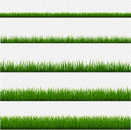 Green Grass Frame Set And Isolated Transparent Background