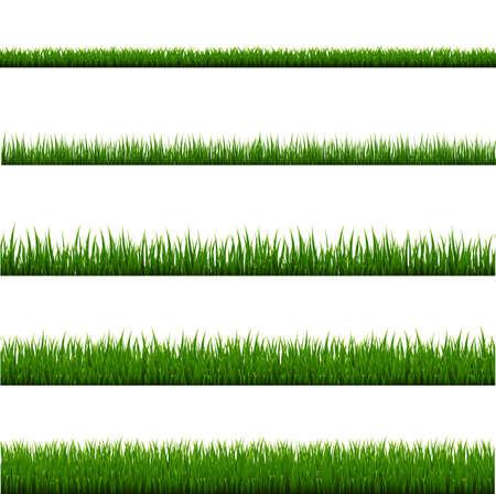 Ensemble de cadre d'herbe verte et fond blanc isolé, Illustration vectorielle