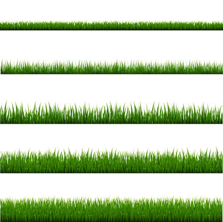 Green Grass Frame Set And Isolated White Background, Vector Illustration
