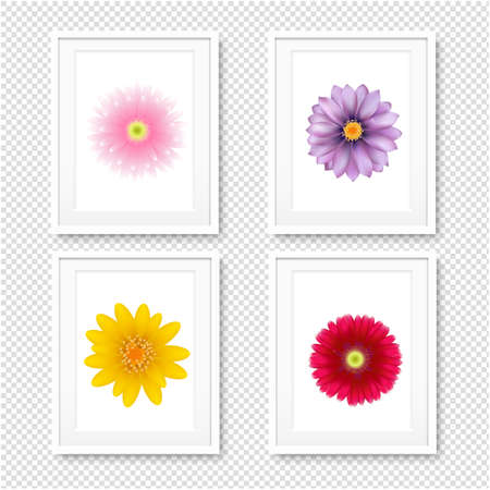 Picture Frame With Flowers Isolated Transparent Illustration