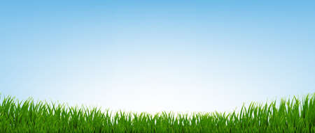 Green Grass Border With Blue Background