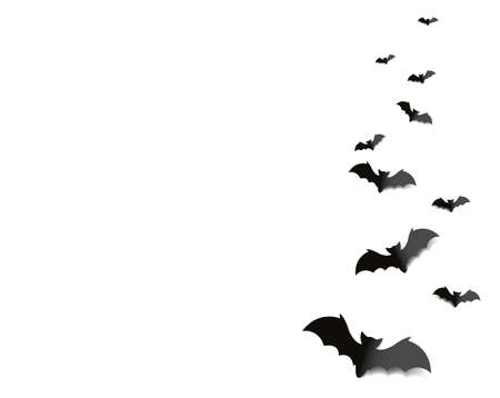 Black Bats Isolated White Background
