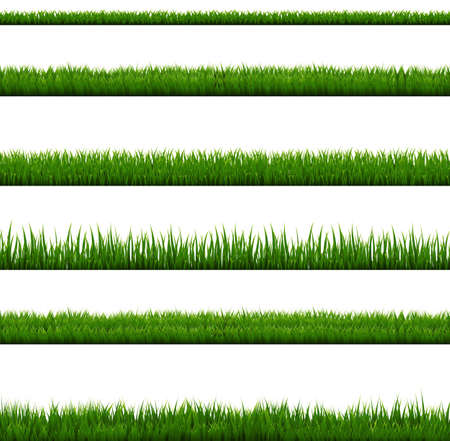 Grass Border Collection Isolated White Background
