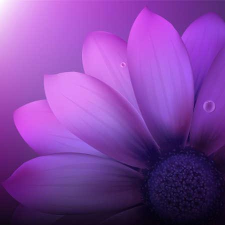 Violet Gerber