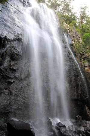 Blackfellow Falls in the Springbrook National Park, Australia photo