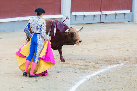corrida: Corrida. Fighting in a typical Spanish Bullfight Editorial
