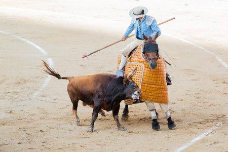 corrida de toros: Corrida. Luchando en una corrida t�pica espa�ola