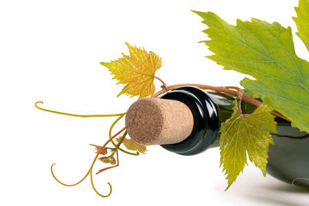 Bottle of wine corc cap grape leaves branch white background