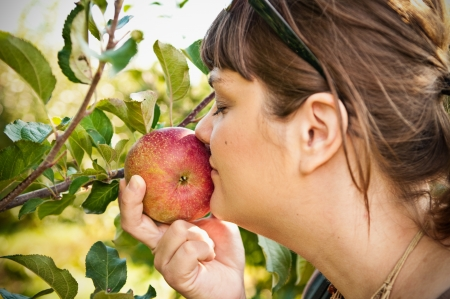 A Caucasian woman smelling a Fuji apple while still on the tree. photo