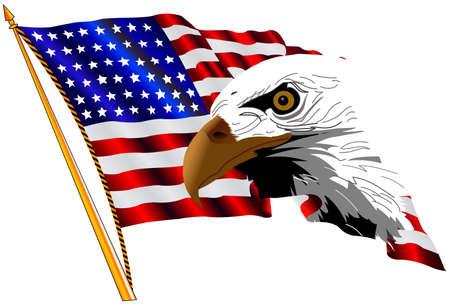 hawks: bandiera americana e l'aquila Vettoriali