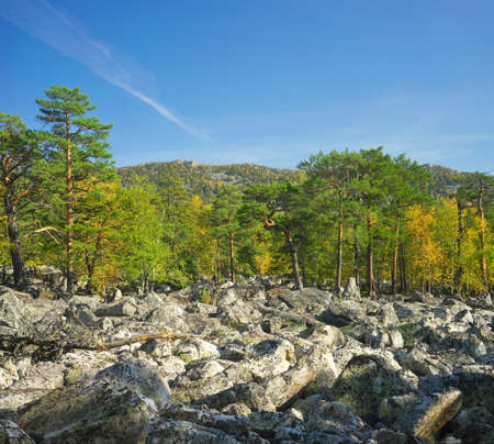 ural: Russia, South Ural. Golden Autumn on TAGANAY