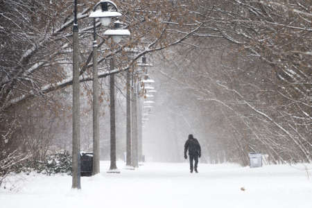 TORONTO - DECEMBER 29 - Pedestrian walks on the road buried by left over from the snowstorm . The snow storm hits Toronto, Canada on December 27, 2012 after knocking out power to thousands of homes in the U.S..