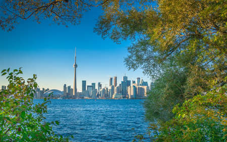 Early autumn scenery in Toronto, Canada Stock Photo - 23300866