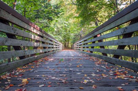 Early autumn scenery in Toronto, Canada Imagens
