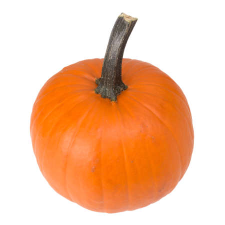 Single pumpkin isolated on the white Imagens