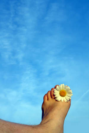 Summer feeling concept displaying a foot with a daisy between the toes Stock Photo - 910194