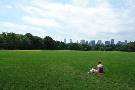 Central park in new york on a warm summers day