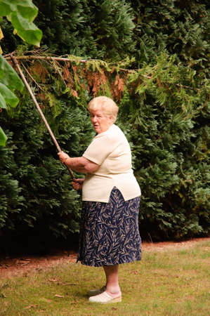 Senior woman with a passion for gardening working in her lovely garden Stock Photo - 5530597