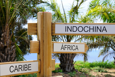 Wooden signpost indicating directions of three world destinations.