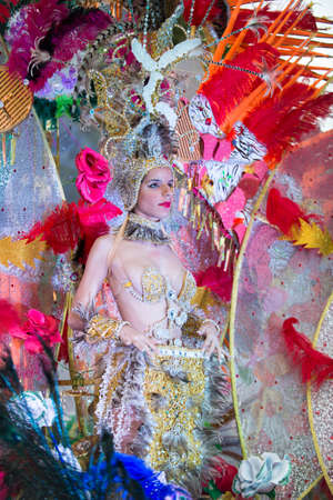 santa cruz de tenerife: TENERIFE, FEBRUARY 9: Group in The Carnival in Santa Cruz de Tenerife, during different contests of Carnival Groups. February 9, 2016 Tenerife (Canary Islands) Spain.