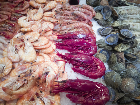 Fresh oysters and prawns ready to sell at the fish market