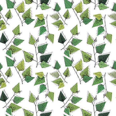 Birch leaves pattern. Hand drawn green birch tree branches, birch leaves. Seamless background.
