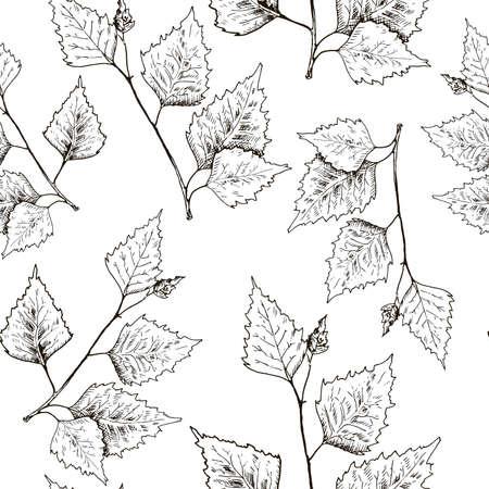Birch leaves pattern. Hand drawn black birch tree branches, birch leaves. Sketch style seamless background.