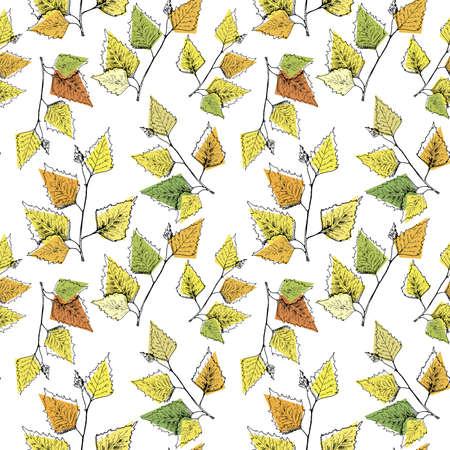 Autumn pattern. Hand drawn yellow birch leaves. Seamless background