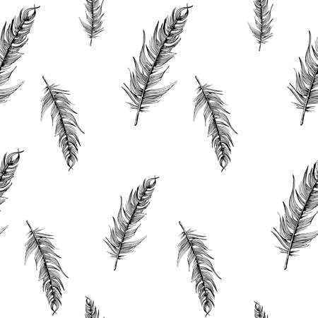 Feathers pattern. Hand-drawn sketch style bird feathers on white background. Seamless vector backdrop. Black and white Illustration